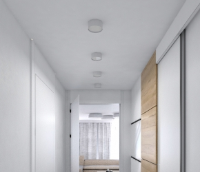 Interior visualization of foyer.