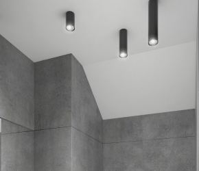 Interior visualization of toilet located on the entry floor of the house.