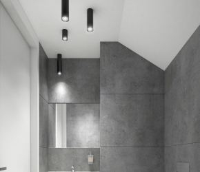 Interior visualization of toilet located on the entry floor ot the house.