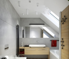 Interior visualization of bathroom located on the first floor of the house.